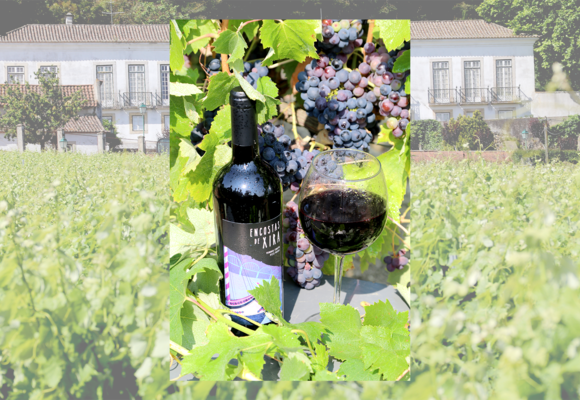 vinho_premiado_1_2500_2500